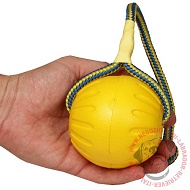 "Gioco ""Swing'n Fling DuraFoam Fetch Ball"", 9 cm di diametro"