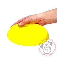 Piccolo Frisbee
